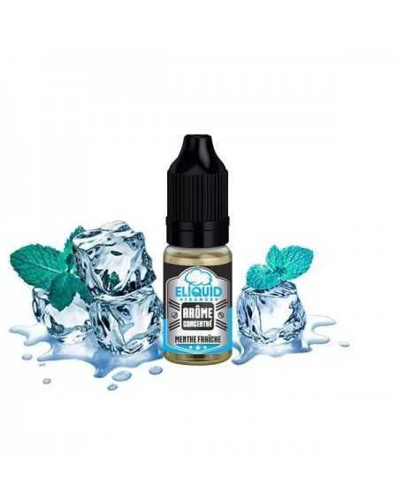 Concentrated Menthe Fraîche 10ml - Eliquid France-1