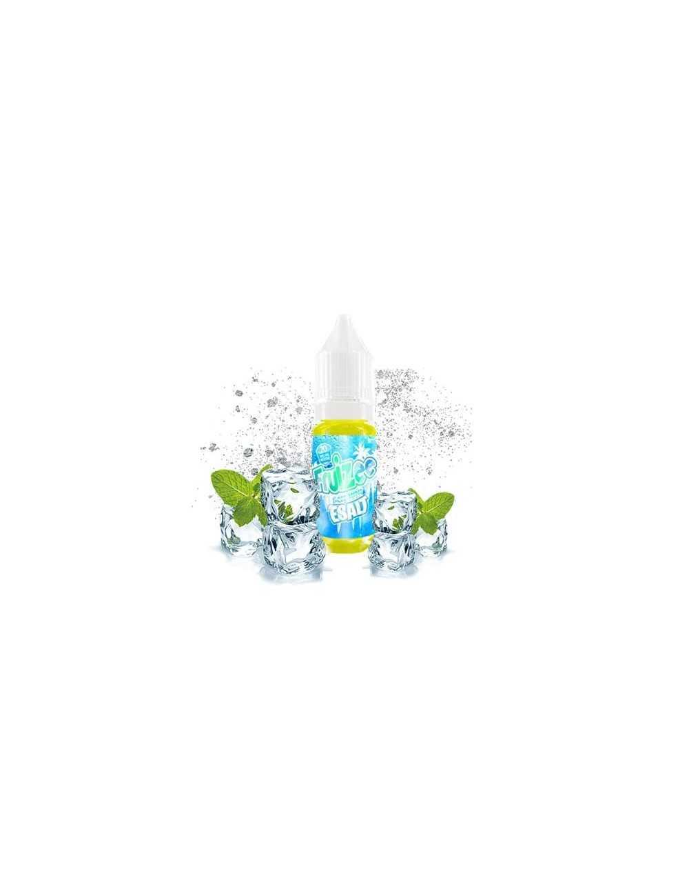 Icee Mint Esalt 10ml - Fruizee Esalt of Eliquid France-1