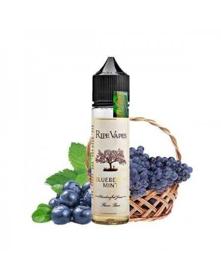 VCT Blueberry Mint 50ml - Ripe Vapes-1