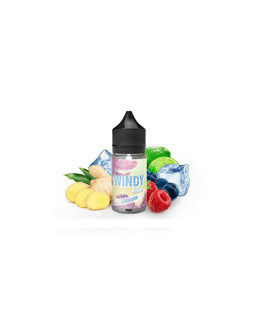 Concentrated aroma Libeccio 30ml - Windy Juice by e.Tasty-1